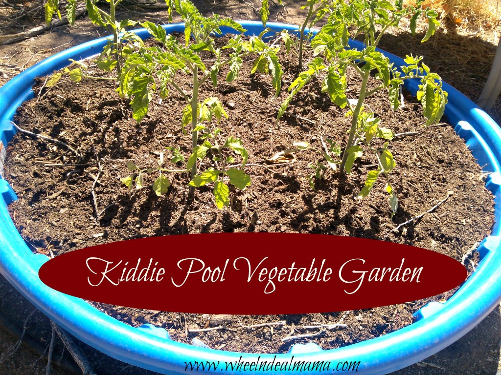 Do it yourself kiddie pool vegetable garden wheel n for Do it yourself garden