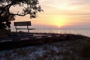 Take a Fall Vacation to Gulf County!! 100% all Natural Adventure! #GCFLnofilter