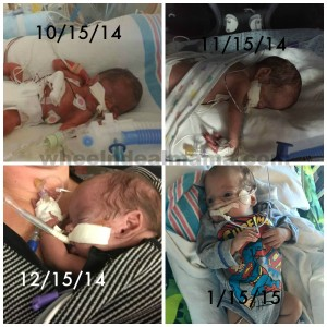 Life in the NICU: 3 Months Later