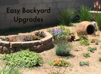 Easy Backyard Upgrades