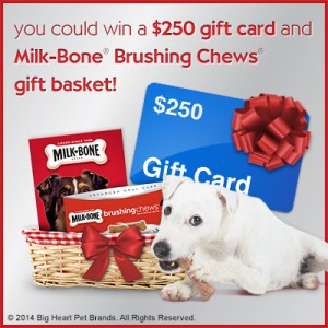 Enter to win a $250 Walmart Gift Card + Milk-Bone Brushing Chews Gift Basket!
