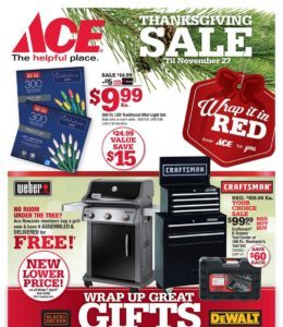 Ace Hardware Black Friday Deals are OUT!