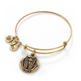 Alex and Ani Bangles $14 & FREE Shipping!