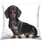 Pet Throw Pillows $3