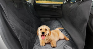 TaoTronics Dog Seat Cover $14.39